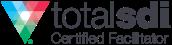 TSDI logo
